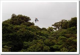 Canopy  Kostaryce