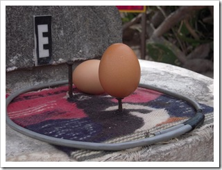 Postawiłem jajko na gwoździu