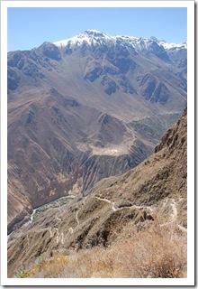 Droga w dół kanionu Colca oraz oaza Sangalle