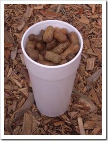 Gotowane orzeszki ziemne - specjalność południa