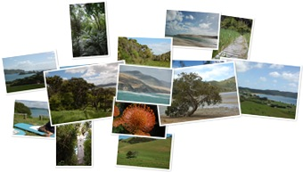 Wyświetl galerię Nowa Zelandia - Northland