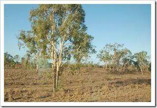 Krajobraz widziany z Sunlandera