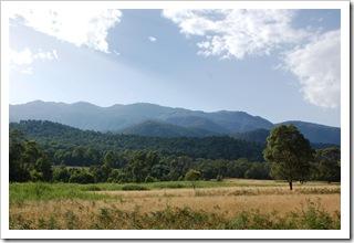 Góra Kościuszki widziana z Geehi