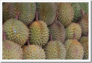 Durian na sprzedaż