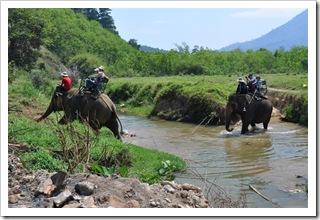 Jedziemy na słoniach (foto Dobrochna)