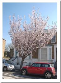 Wiosna w Londynie